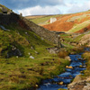 Jigsaw: Yorkshire Stream
